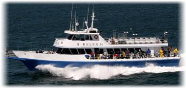 Charter boats cape cod fishing charters cape cod deep for Cape cod fishing charters