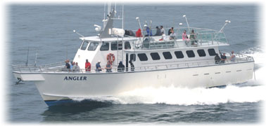 Charter Boats Cape Cod | Fishing Charters Cape Cod | Deep ...